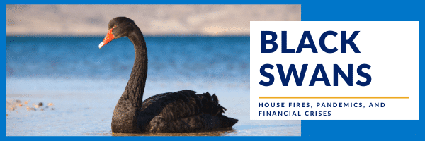 Black Swans: House Fires, Pandemics, and Financial Crises